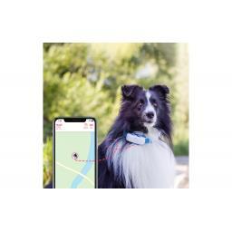 GPS-Tracker LTE für Hunde, weiss