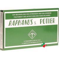 Raphanus S Potier 12 Trink Ampullen 10 ml
