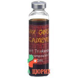 Panax Ginseng 10 Trinkampullen