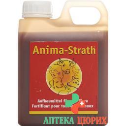 Anima Strath Aufbaumittel 5л