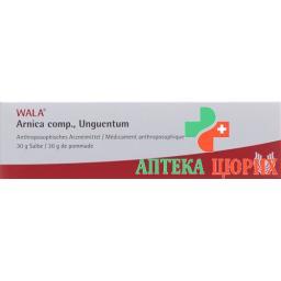 Wala Arnica Comp мазь в тюбике 30г