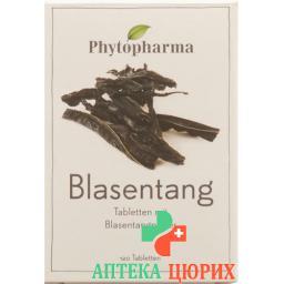 Фитофарма Блазентанг 120 таблеток