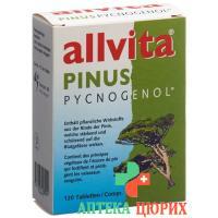 Аллвита Пинус пикногенол 120таблеток