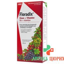 Floradix Vitamine + organisches Eisen Saft Flasche 250мл