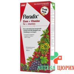 Floradix Vitamine + organisches Eisen Saft Flasche 500мл
