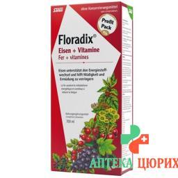 Floradix Vitamine + organisches Eisen Saft Flasche 700мл