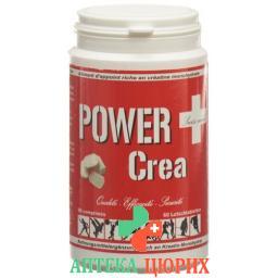 POWER CREA KREATIN MONOHYDRATE