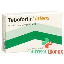 Тебофортин Интенс 120 мг 30 таблеток покрытых оболочкой