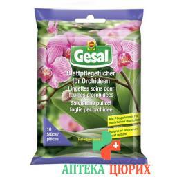 GESAL BLATTPFL TUECH ORCHI