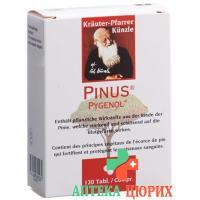 Пинус Пигенол 120 таблеток