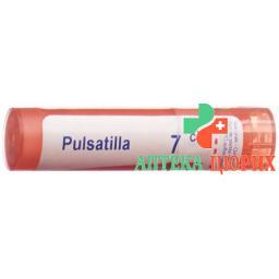 Boiron Pulsatilla в гранулах C 7 4г