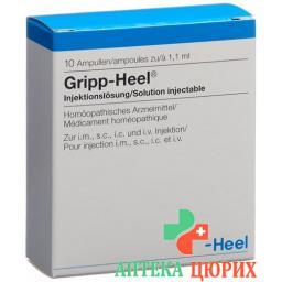 Грипп Хеел 1.1 мл 10 ампул раствор для инъекций