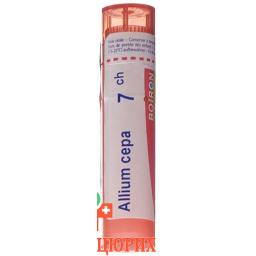 Буарон Аллиум Кепа гранулы C7 4 грамма