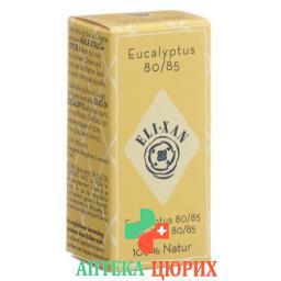 Elixan Eucalyptus 80/85 Ol 10мл