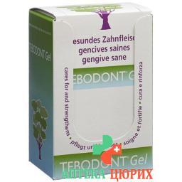 Tebodont Display Gel