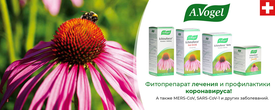 A.Vogel Echinaforce - Купить