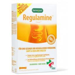 Бенегаст Регуламин порошок 6 грамм10 стик - саше